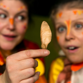 The Whirlybird